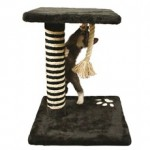 Kradsetræ er et must for enhver kat (foto lavprisdyrehandel.dk)
